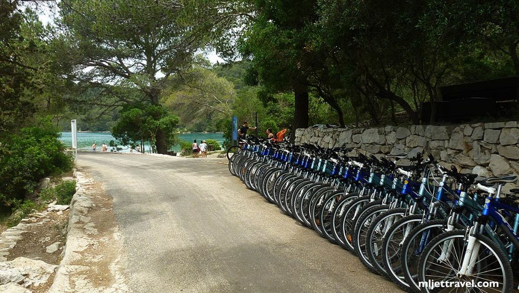Selection of bicycles in the Park
