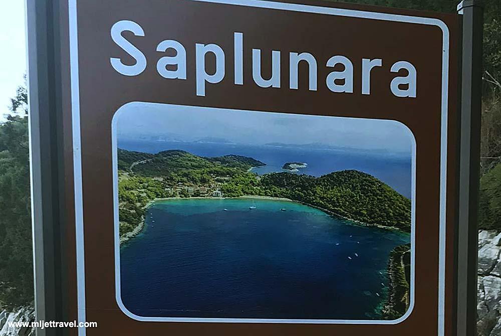 Saplunara